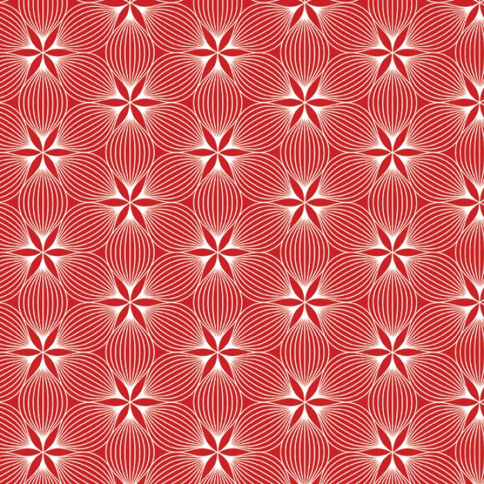 č.4980 optical illusions