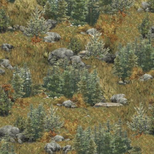 č.2061 deer mountain