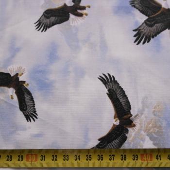 č.2108 eagle pass