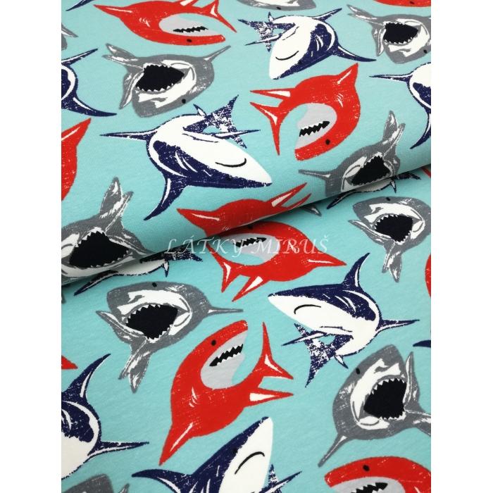 č.184 jersey - žraloci