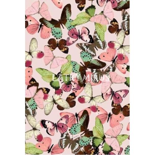 č.2584 teplákovina - motýli