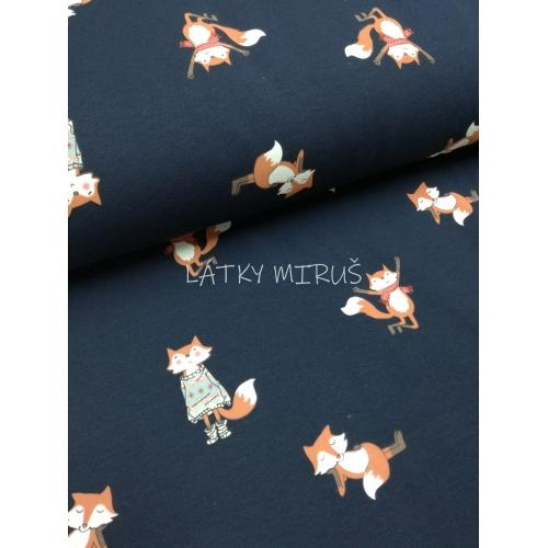 Teplákovina počesaná - lišky na modré