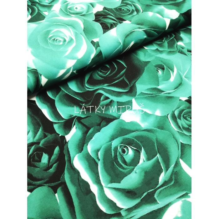Kočárkovina - růže - digi tisk