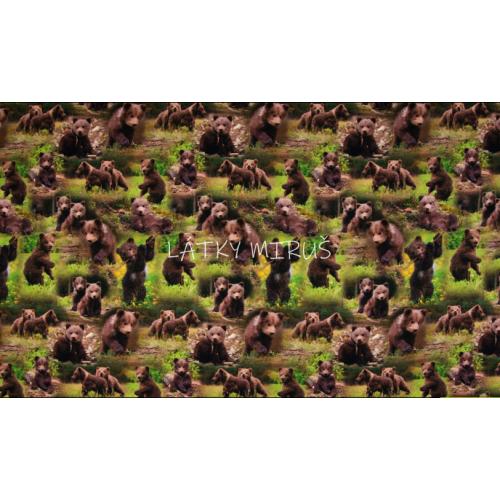 Úplet - medvědi v trávě