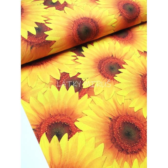 č.5037 slunečnice - dekorační