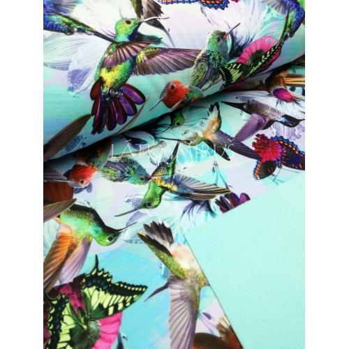 Softshell kolibříci - digi tisk